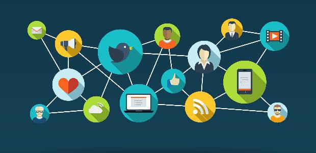 Embed Social Media Feed