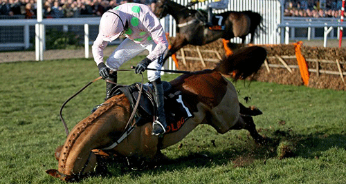 Annie Power's fall