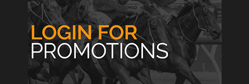 Look for special promotions on horse racing