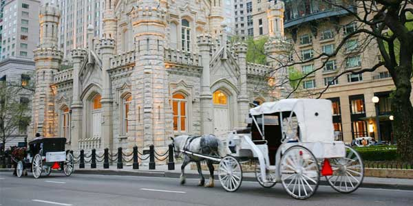 dating site in Chicago – Horse and Carriage ride
