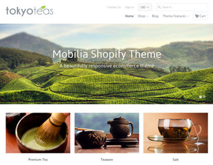 Shopify Template 4