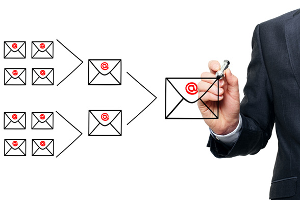 Most email marketing providers offer special features