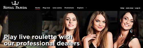 Royal Panda is a great place to play online casino games