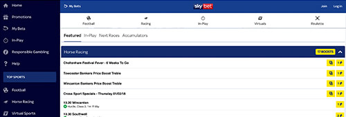 Enjoy sports betting at Sky Bet