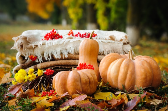 Thanksgiving Picnics Might Be Better Than Family Dinners For A New Relationship