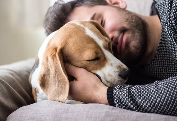 Best Pet Psychics - Man Loving Dog