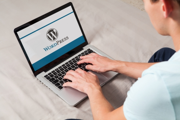 Is free WordPress hosting is right for you?