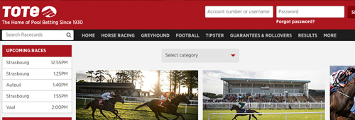 Enjoy Tote's easy-to-navigate site and Tipster section