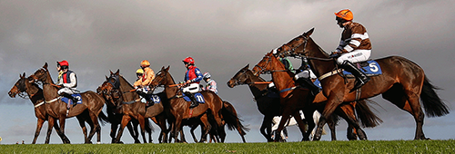 read our betting guide to discover more