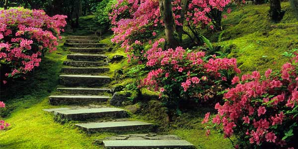 Dating in Portland in the Japanese Garden