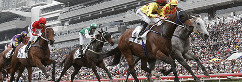 There are some great Australian horse racing events