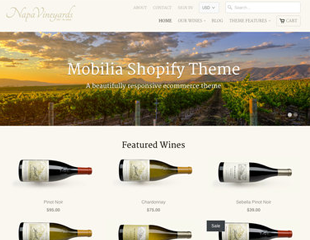 Shopify Template 3