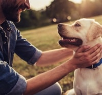Complete Guide to DNA Testing for Dogs and Pets